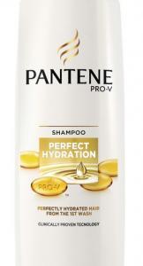 Pantene Pro-V Perfect Hydration Σαμπουάν για ξηρά μαλλιά 360ml